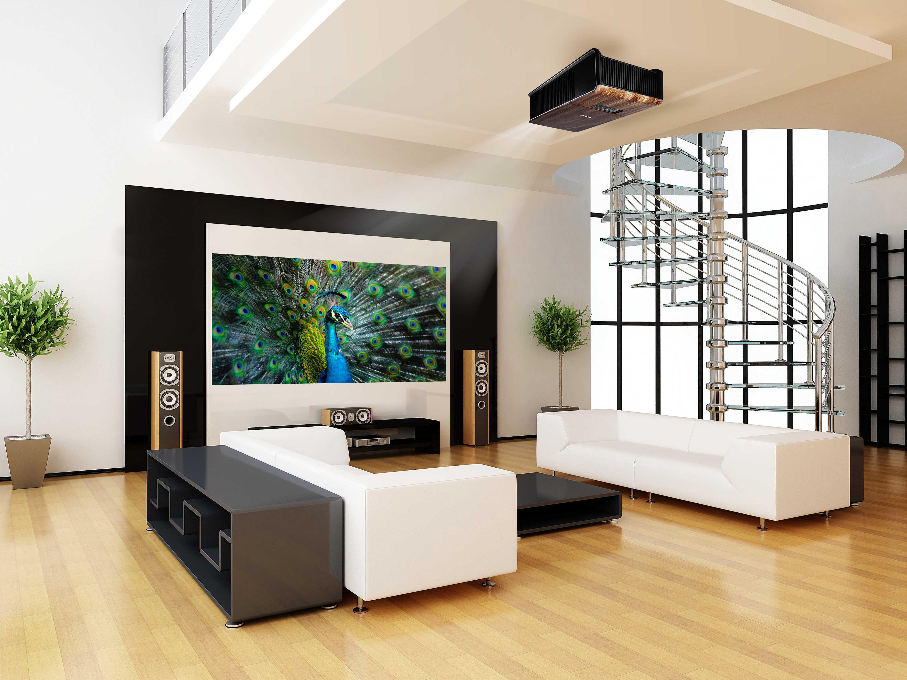 center projekcije storitve svetovanje. Black Bedroom Furniture Sets. Home Design Ideas